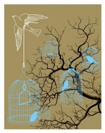 Birdcase Print von Traceface