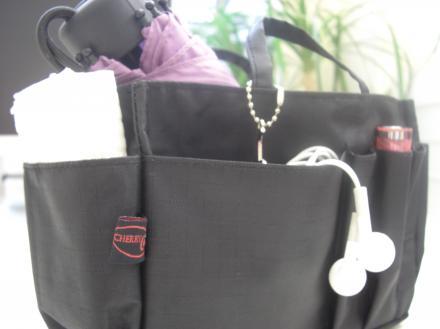 Handbag Organiser