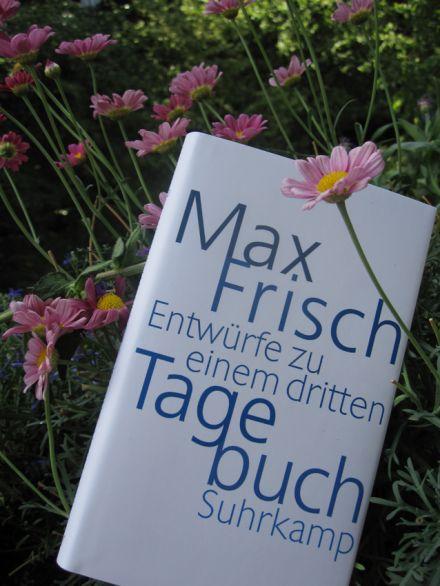 Buchtipp Max Frisch Entwürfe zu einem dritten Tagebuch