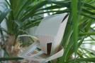 Mein neues kleines Gartenhaus