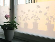 Fensterfilm von Strössel